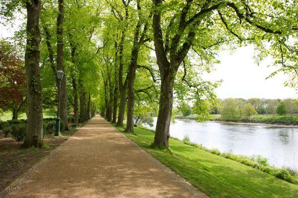 Path by river at Avenham Park